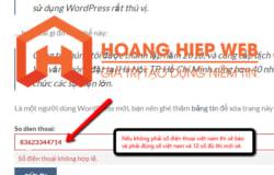 Hướng dẫn kiểm tra số điện thoại Việt nam trên Plugin Contact form 7