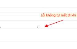 Sửa lỗi icon loading không tự mất đi của Contact Form 7 khi sử dụng theme Flatsome
